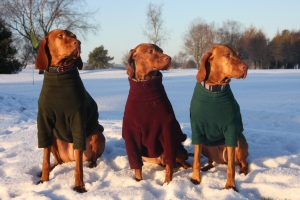manteau pour chien comparatif