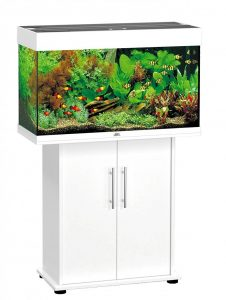 aquarium poisson complet juwell rio 125