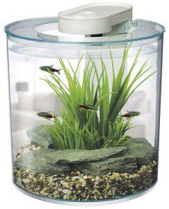 aquarium-poisson-rouge-marina-360