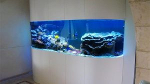 meuble aquarium design
