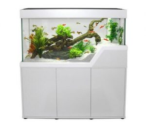 meuble aquarium pacific-caraibes