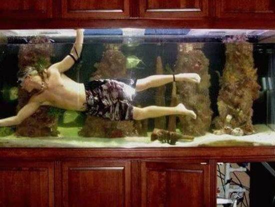 nettoyer-un-aquarium-aspirateur