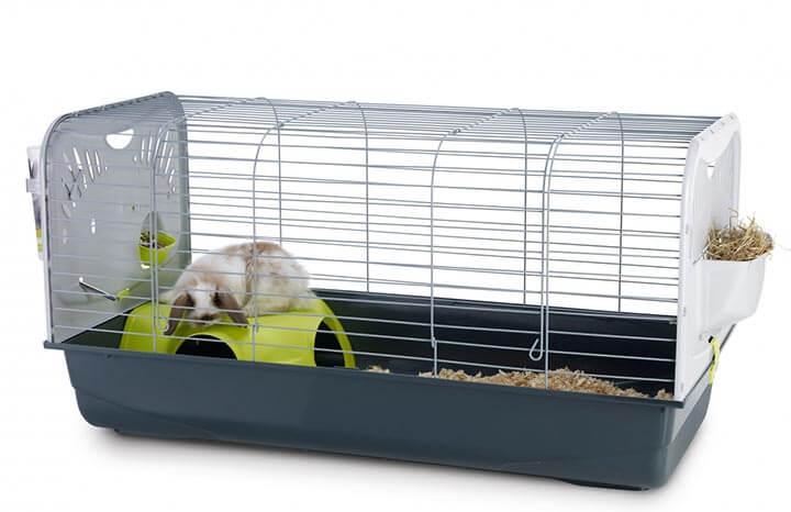 cage-lapin-nain-interieur