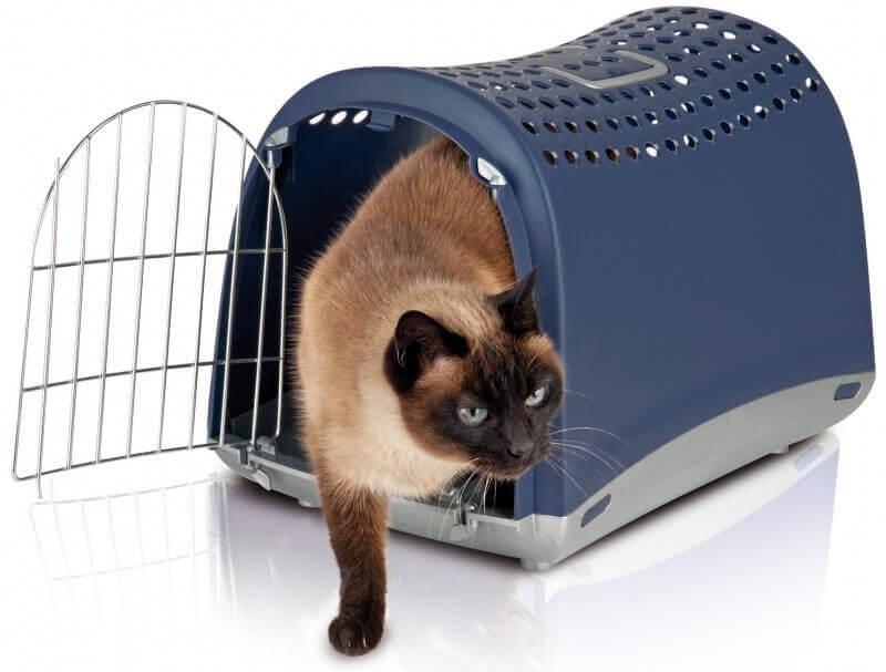 meilleure-caisse-de-transport-pour-chat